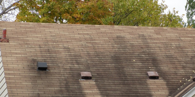 Decay-of-roof-shingles